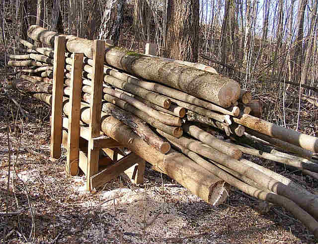 Cutting A Log : How to cut firewood from felled trees safely and easily