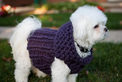 Chunky-Knit-Dog-Sweater