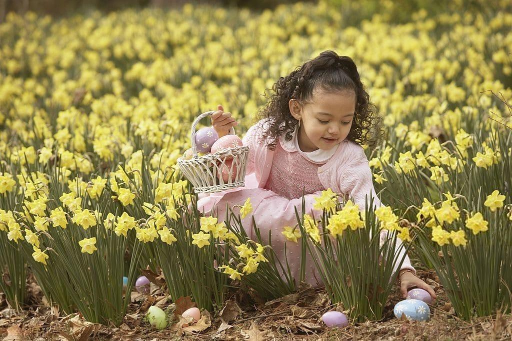 kids spring knits