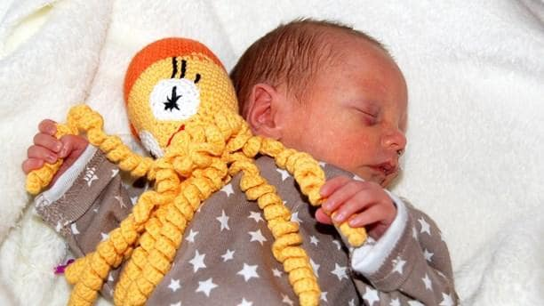 crochet octopus fo a preemie project