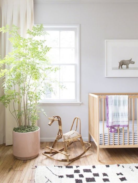 plants in the baby nursery