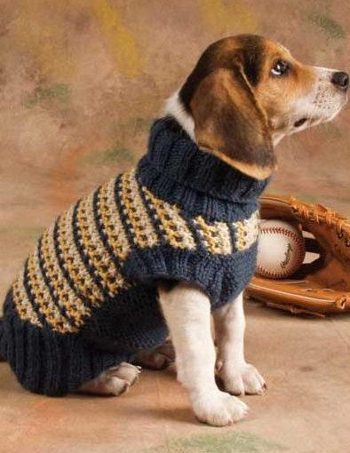 striped knitted dog sweater