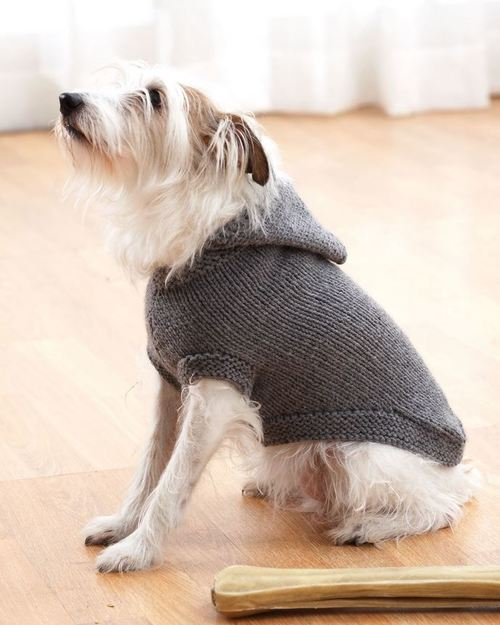 hooded-dog-sweater