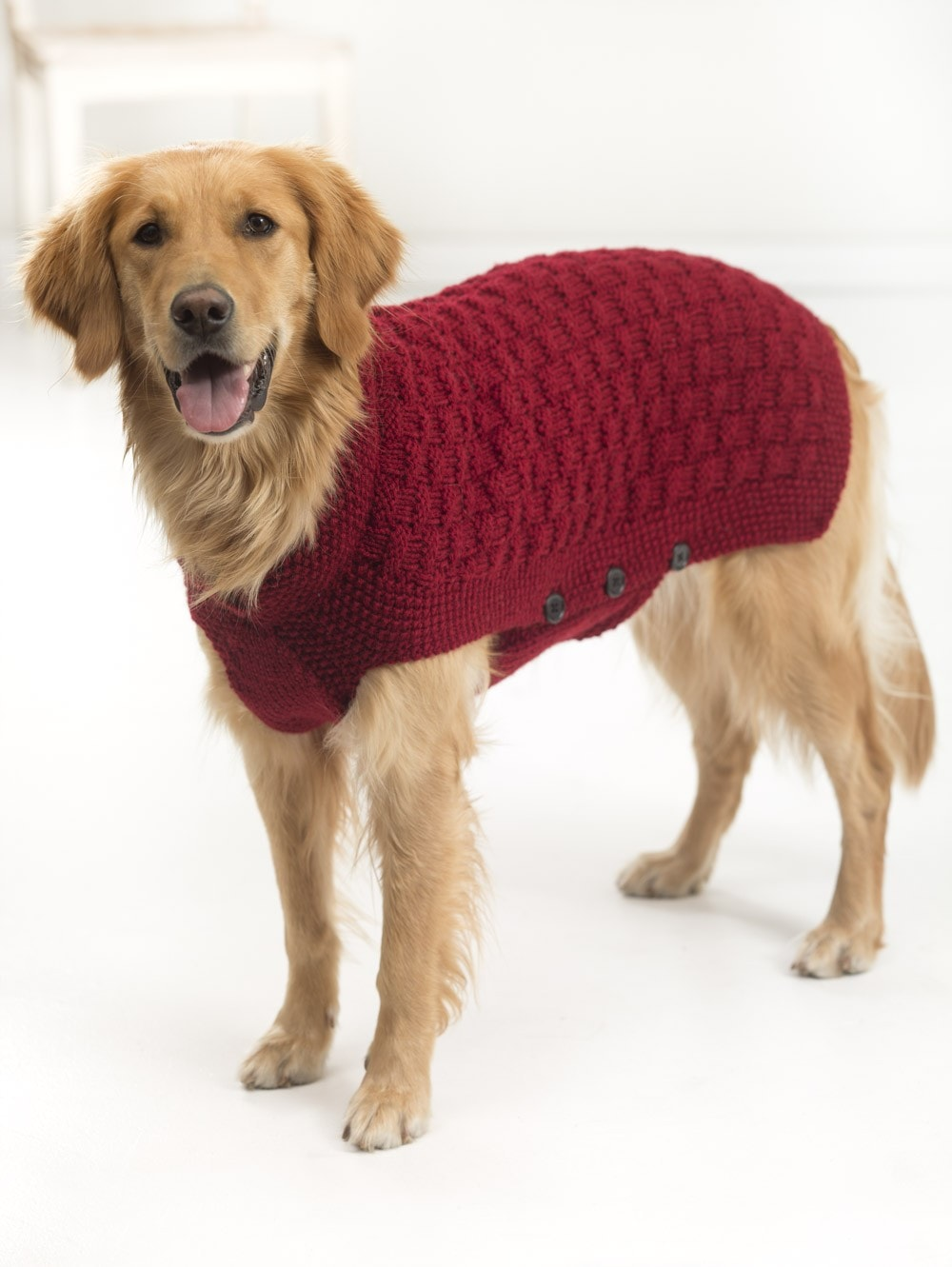 textured knit dog sweater