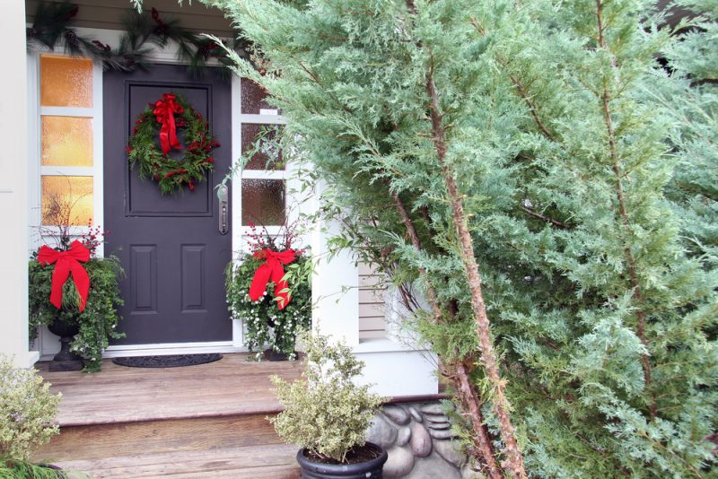 Christmas front door pine wreath with red ribbon