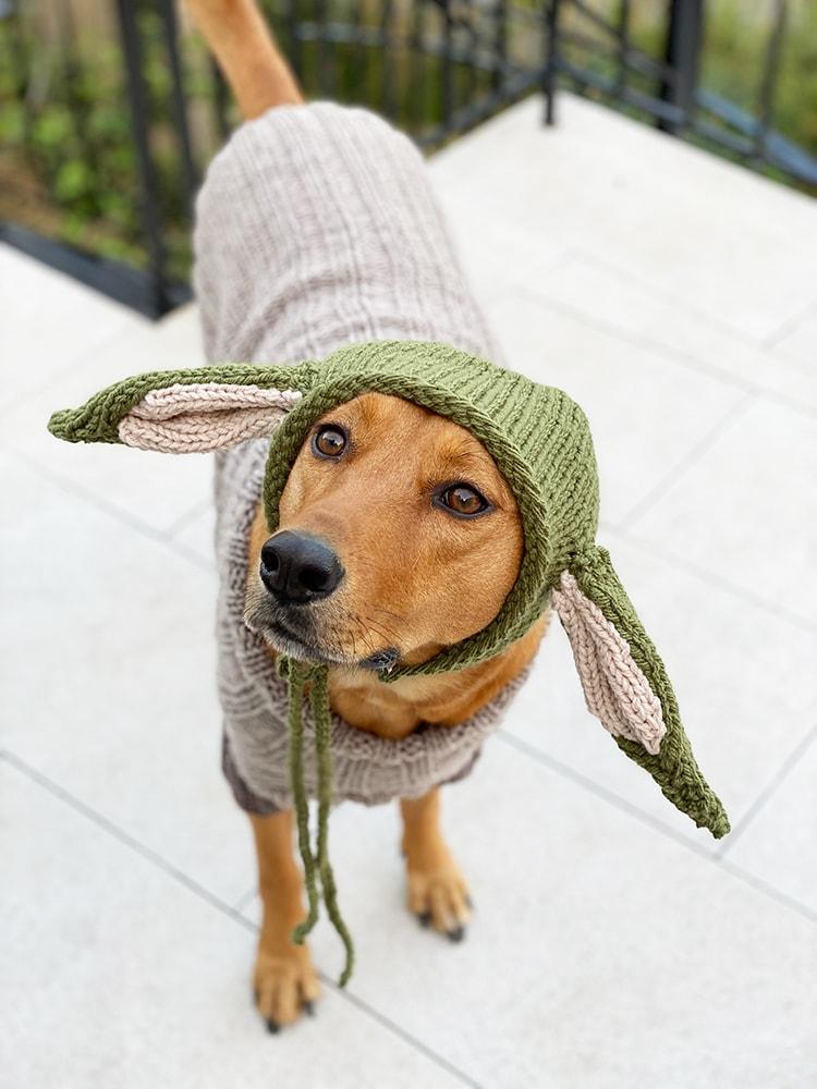 Baby Yoda Pattern Dog Sweater Handy Little Me