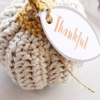 Mini Pumpkin Crochet Pattern {Easy And Quick}