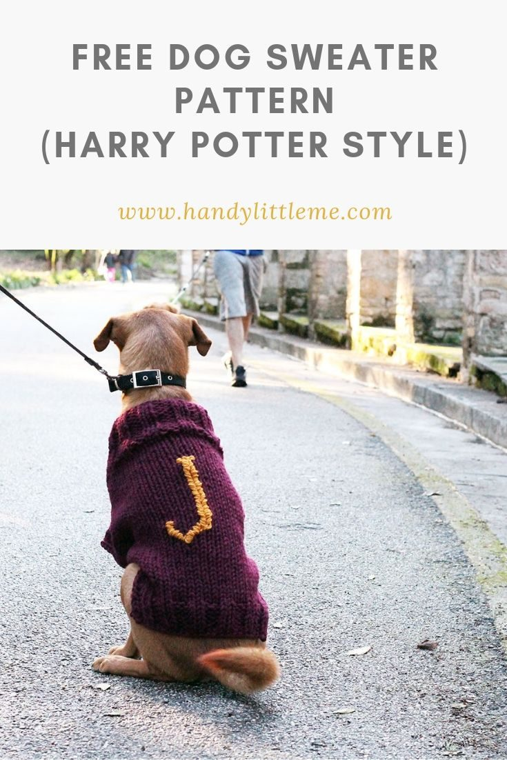 The Mischief Managed Dog Sweater Free Knitting Pattern