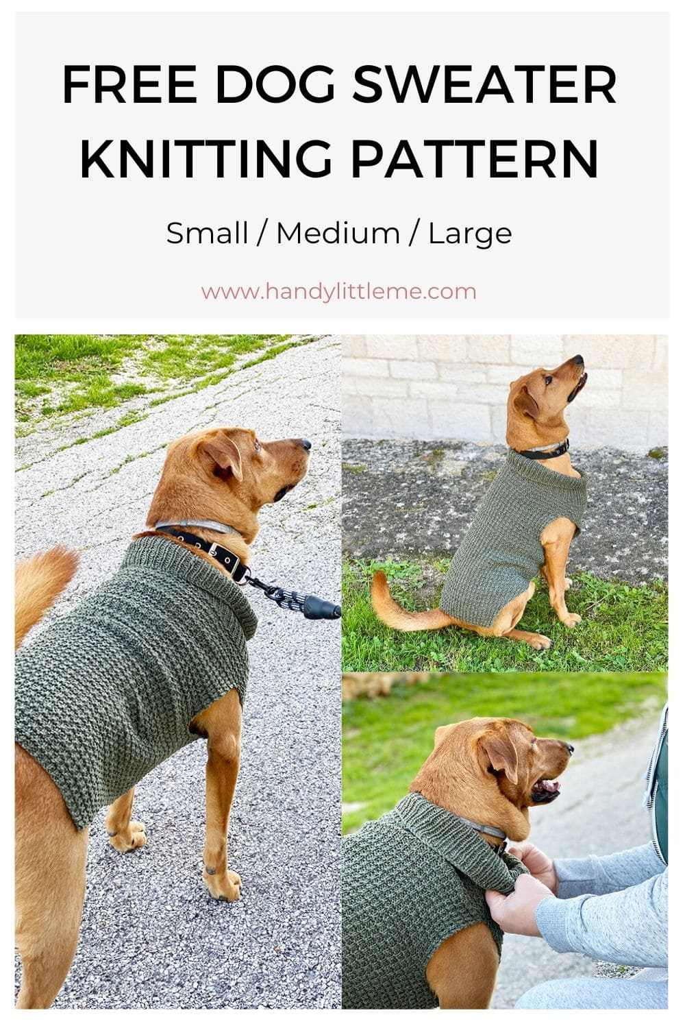 Free dog sweater pattern