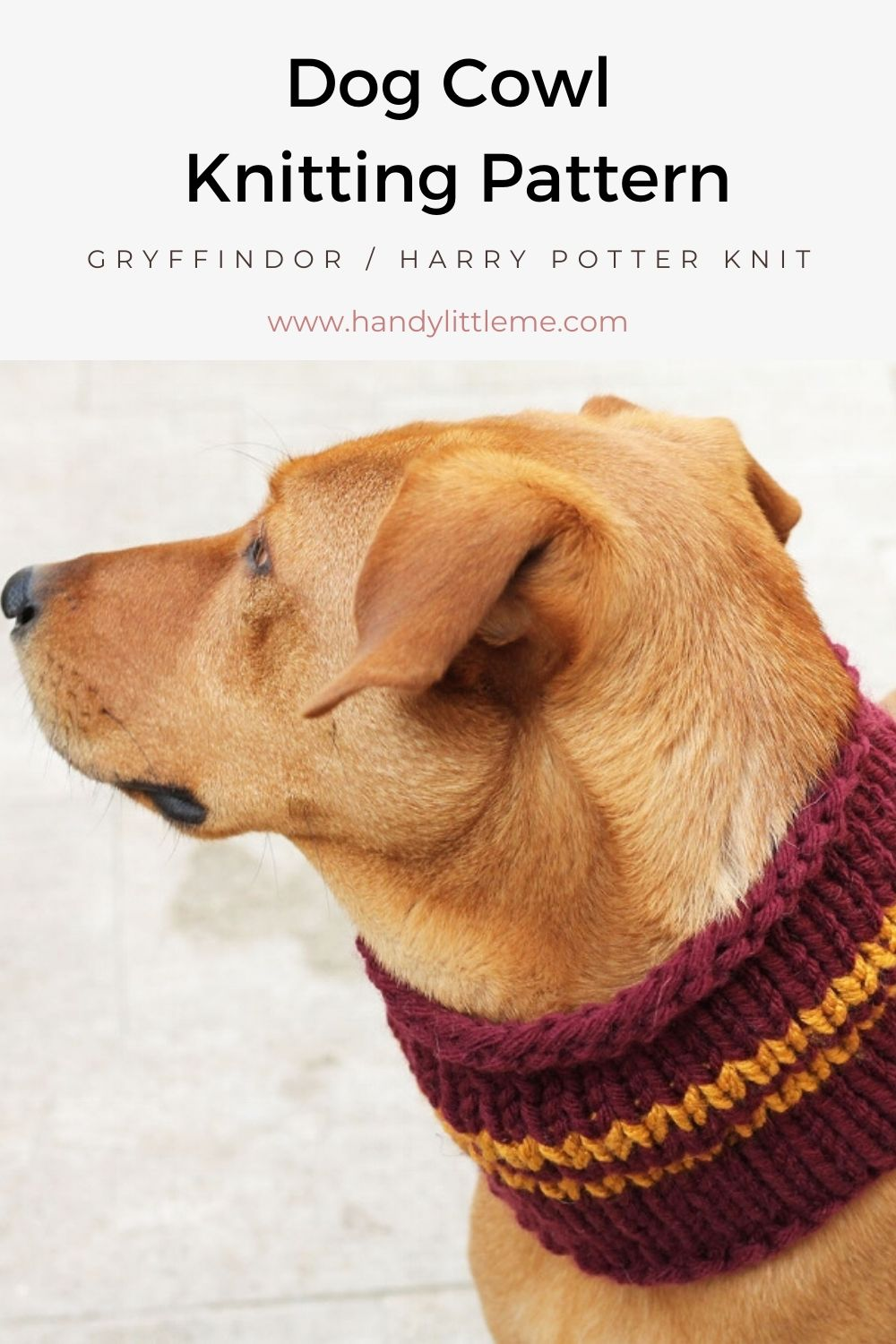 Knitted Harry Potter Scarf for a dog