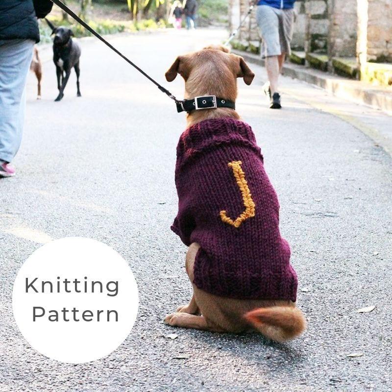 Mischief dog sweater