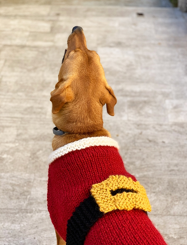 Santa claus sweater for dogs