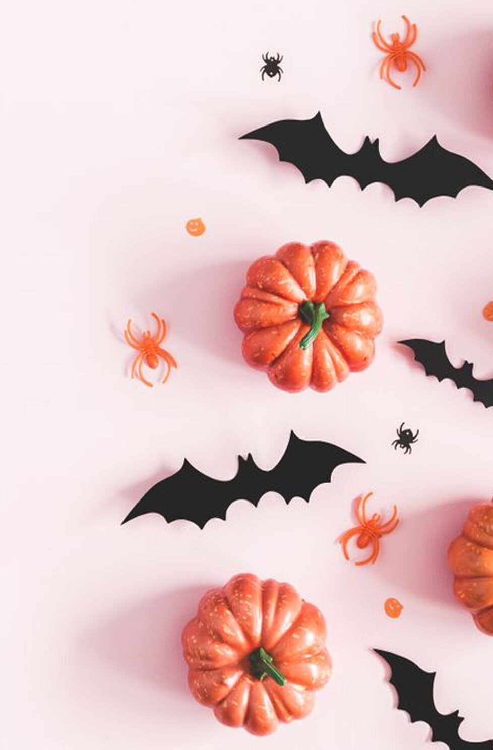 6 Magical Halloween Decorations