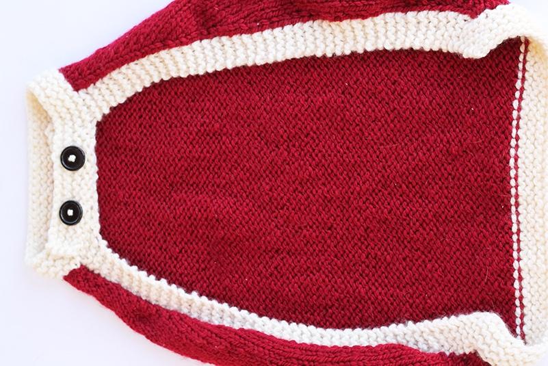 flat view of dog coat