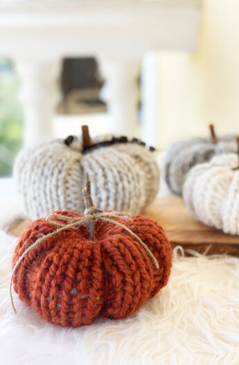 Pumpkin Knitting Pattern {Beginner Friendly!}