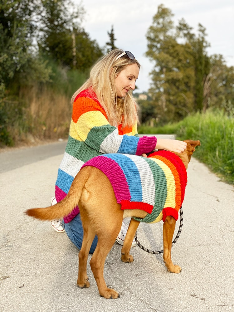 rainbow sweater and dog sweater
