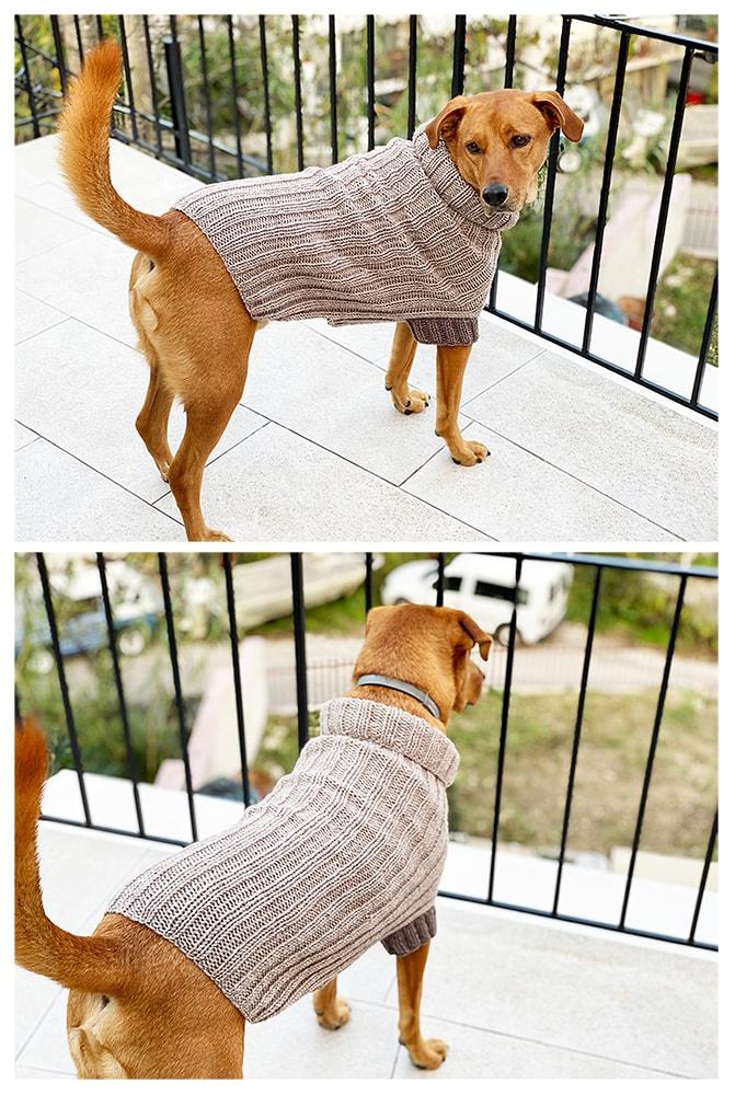 ribbed knit dog sweater