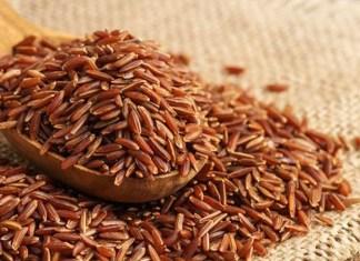 ăn gạo lứt chữa bệnh tiểu đường