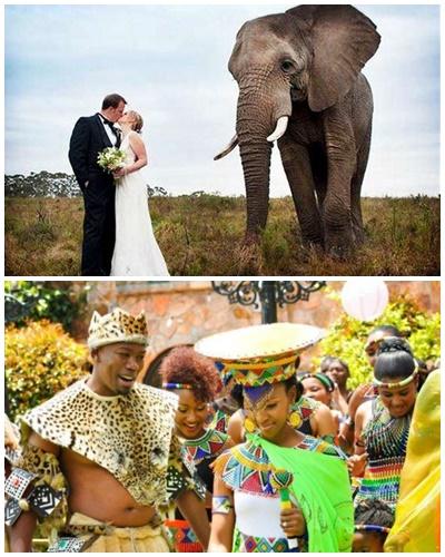 A może by tak ślub w Republice Południowej Afryki? (Agnieszka Malonik)