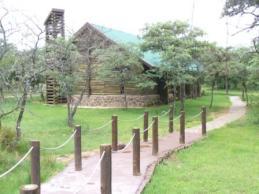 chapel_in_the_bush