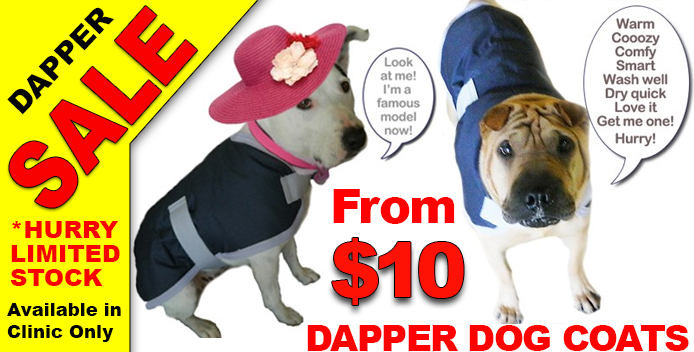 Dapper-Dog-Coat-Sale
