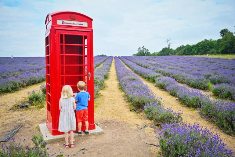 Visit to Mayfield Lavender Farm photo of twins with phonebox
