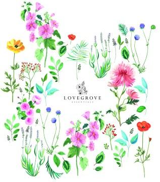 FloralLogo_fullsize