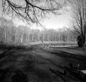 farm pond edited4