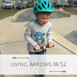 """The Living Arrows project took it's name from a poem by Kahlil Gibran, """"You are the bows from which your children as living arrows are sent forth""""."""
