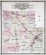 Wood County WI Plat 1909