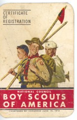 The front side of the Boy Scouts of America membership card of David D. Hanneman of Mauston, Wisconsin.