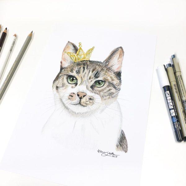 Tierportrait Zeichnung Katze Beanie