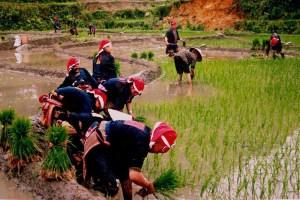 North Vietnam Package 5 Days