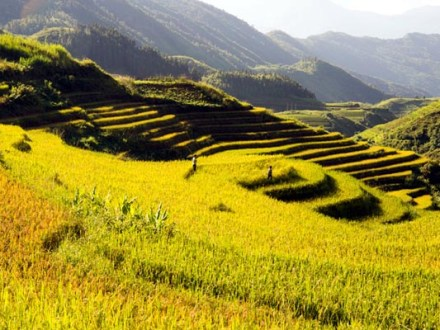 Sapa Trekking Tour 6 Days