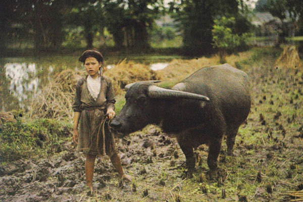 Rare Pictures Of Hanoi In The 19th Century (39)