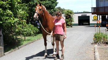 Liaison off to new home in Auckland