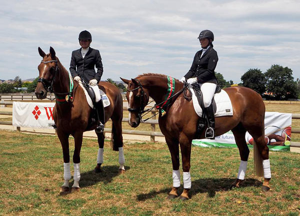 Two proud Vollrath Lessing bred Hanoverians: Lauretta with Jutta at left, with Latimer and Rochelle, at the 2016 North Island Dressage Championships in Masterton.