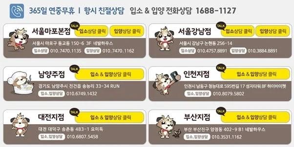 Hình ảnh từ Hàn Quốc Kia Rồi: 128375270 3788129637884461 4899118828795118883 n