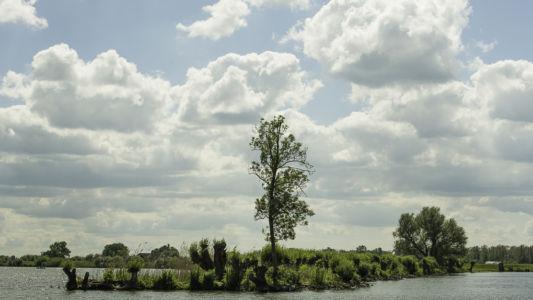 Biesbosch 2014-18