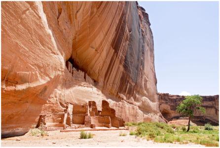 Canyon De Shelly White Hous Ruins