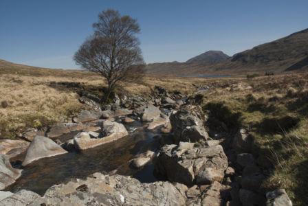 Corrour Scotland 2007-11