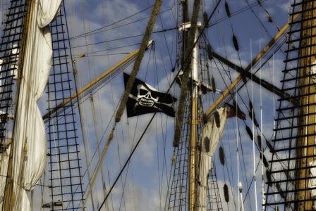 Sail Amsterdam 2010-11
