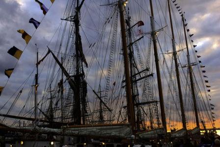 Sail Amsterdam 2010-7