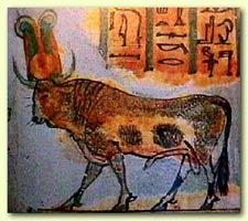 Apis, the Bull