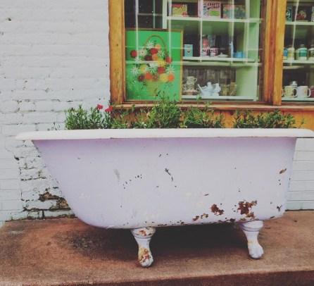 flower tub durham 3.21.17