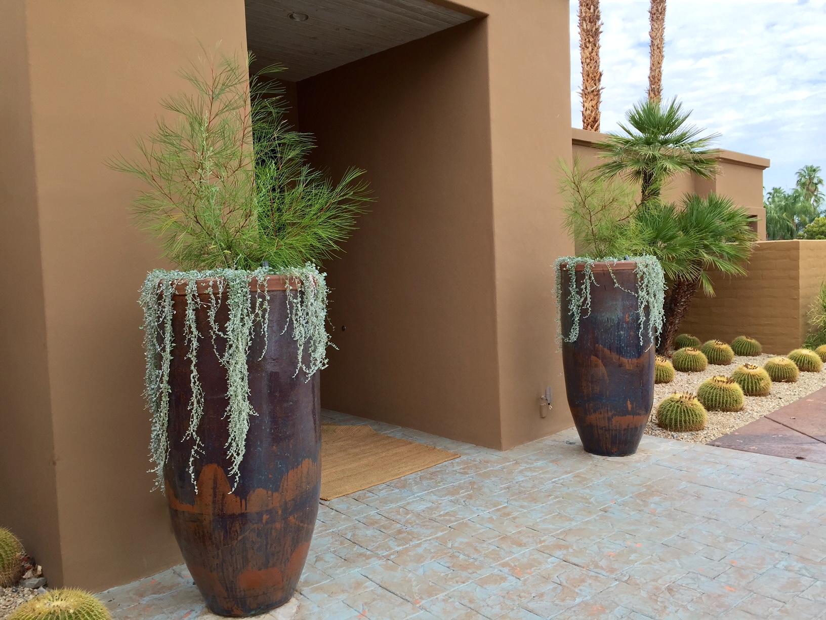 Transform Your Yard With Water Efficient Landscape Design