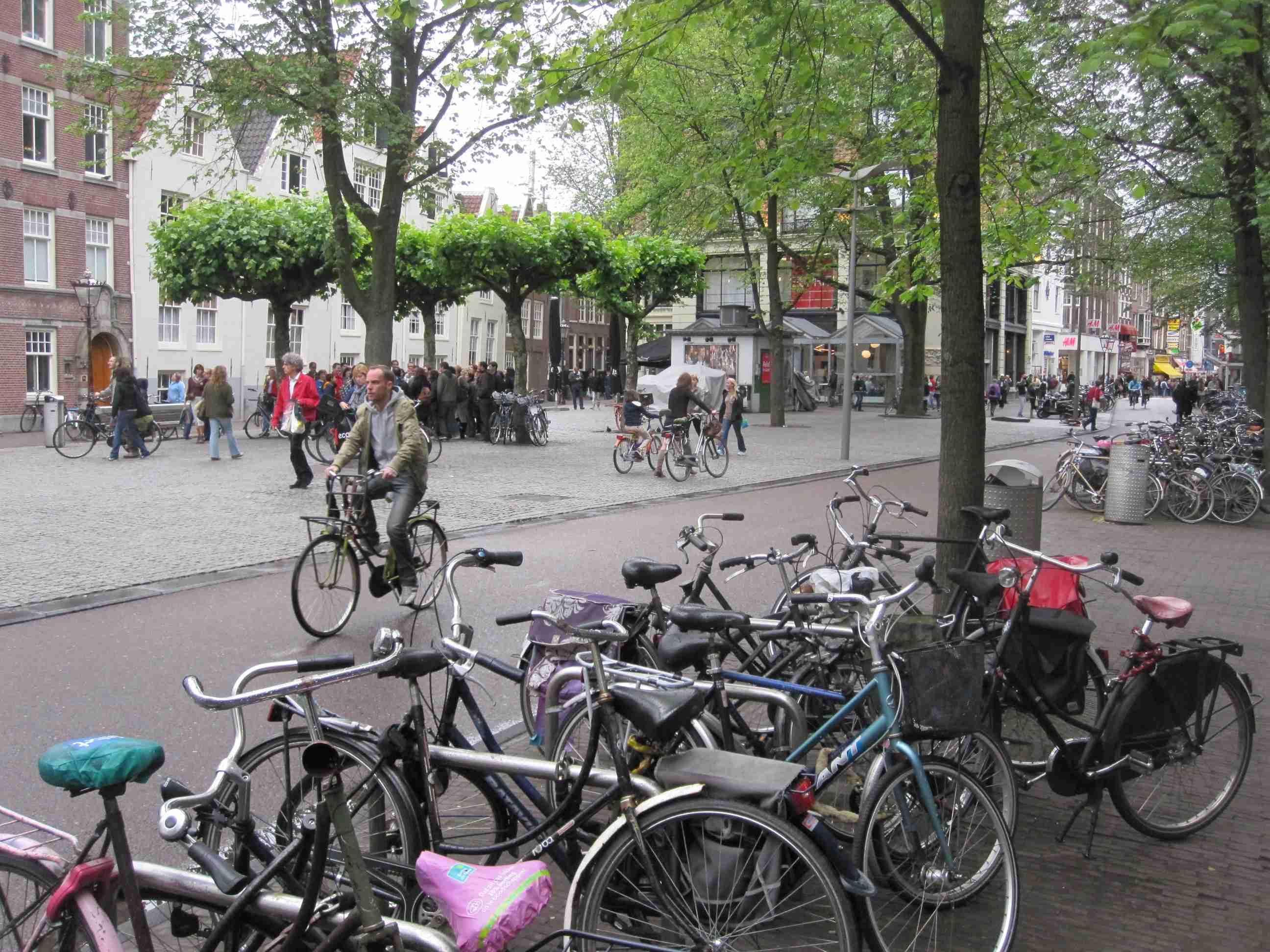 2011 06 seg bike lanes  02