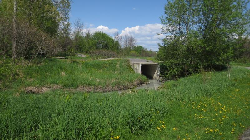2014 05 19 Urban commuter Ottawa – Nepean 12
