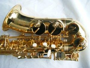 Trevor james the horn alto sax