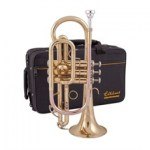 elkhart cornet and case